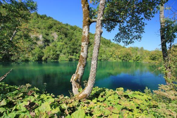 Plitvicer_seen_batinovac_jezero2.jpg