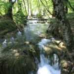plitvicer_seen_ciginovac_jezero_2